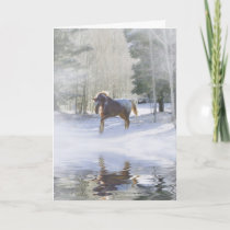 Horse Christmas Season's Greetings Card