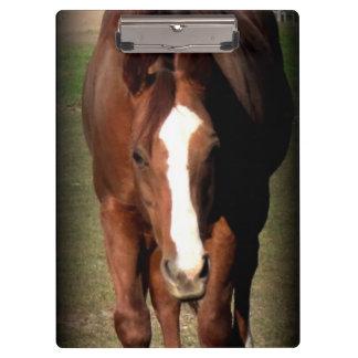 Horse Clipboard