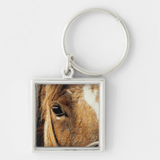 Horse Close Up Silver-Colored Square Keychain