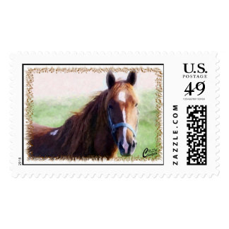 Horse Close Up Postage