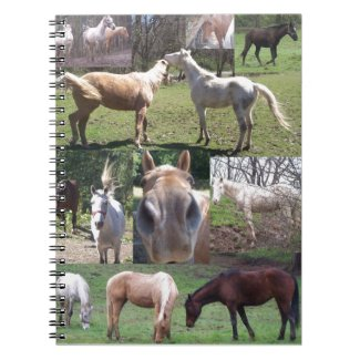 Horse Collage Note Book