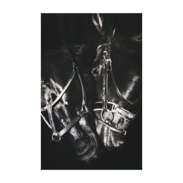 Beach Themed horse collection. black & white canvas print