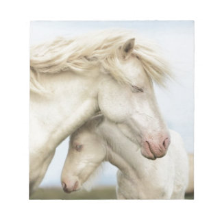 Horse collection notepad