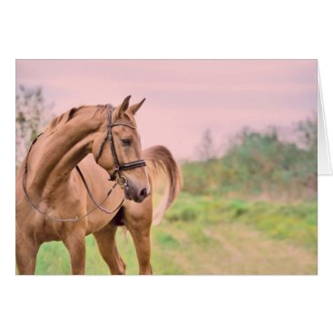 Beach Themed horse collection. sportive card