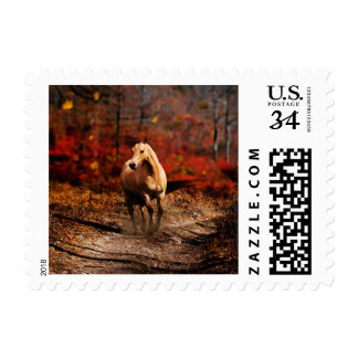horse colour postage stamp