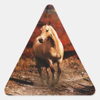 horse colour triangle sticker