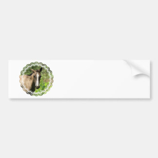 Horse Colt Bumper Stickers