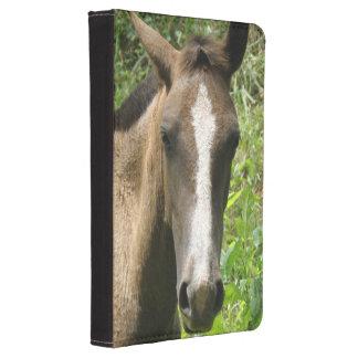 Horse Colt Kindle Touch Case