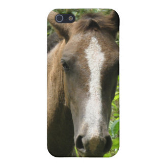 Horse Colt iPhone 4 Case