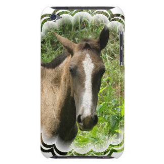 Horse Colt  iTouch Case Barely There iPod Cases
