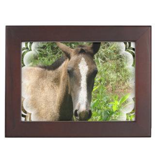 Horse Colt Keepsake Boxes