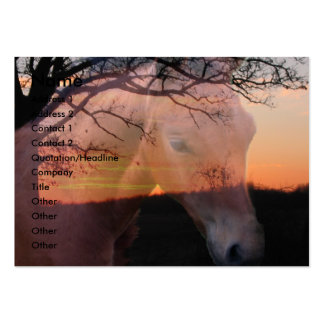 Horse Colt  Sunrise Business Card