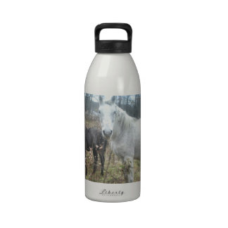 Horse & Colt Reusable Water Bottles