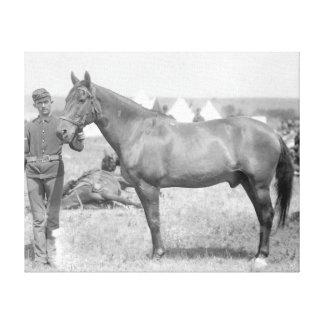"Horse ""Comanche"" the sole Survivor of the Custer Canvas Print"