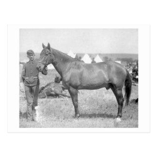 """Horse """"Comanche"""" the sole Survivor of the Custer Postcard"""