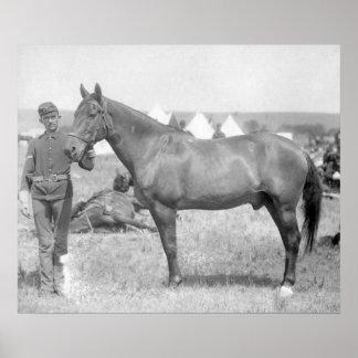 "Horse ""Comanche"" the sole Survivor of the Custer Poster"