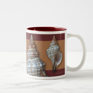 Horse Conch Shell Mugs