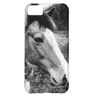Horse Cover For iPhone 5C