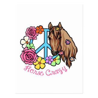 Horse Crazy Postcard