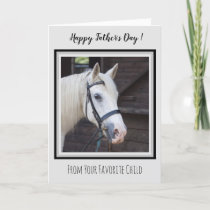 Horse Dad - Happy Father's Day Cute Horse Photo Card
