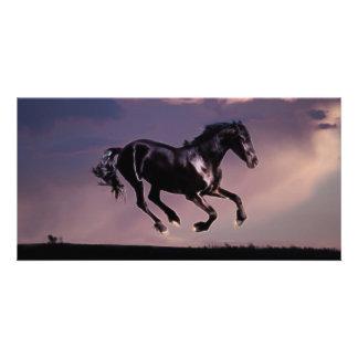 Horse dance at sunset card