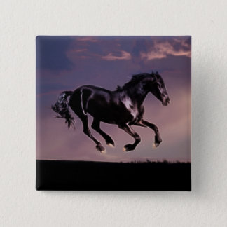 Horse dance at sunset pinback button