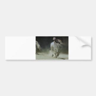 HORSE DANCE BUMPER STICKER