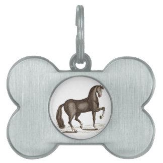 Horse Dance - DANCING HORSE Pet Tag