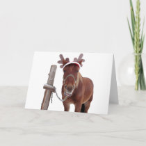Horse deer - christmas horse - funny horse holiday card