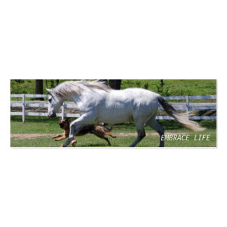 HORSE & DOG EMBRACE LIFE Double-Sided MINI BUSINESS CARDS (Pack OF 20)