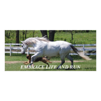 HORSE & DOG EMBRACE LIFE RACK CARD