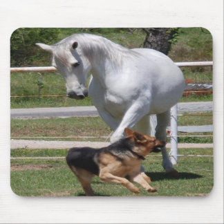 HORSE DOG PLAY MOUSE PAD