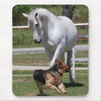 HORSE & DOG PLAY MOUSE PAD
