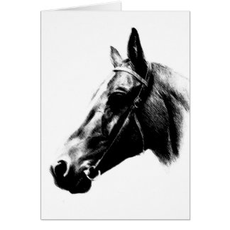 Horse Drawing Artwork Card