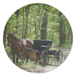 Horse drawn carriage tethered in woods melamine plate