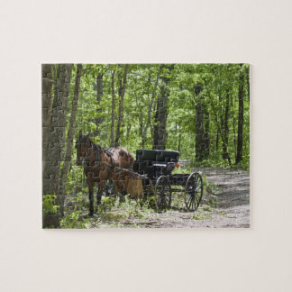 Horse drawn carriage tethered in woods puzzle