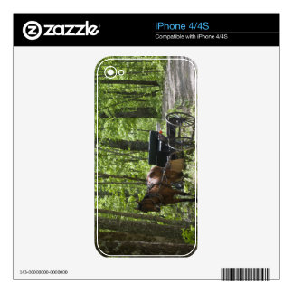 Horse drawn carriage tethered in woods skin for the iPhone 4S