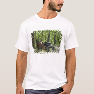 Horse drawn carriage tethered in woods T-Shirt