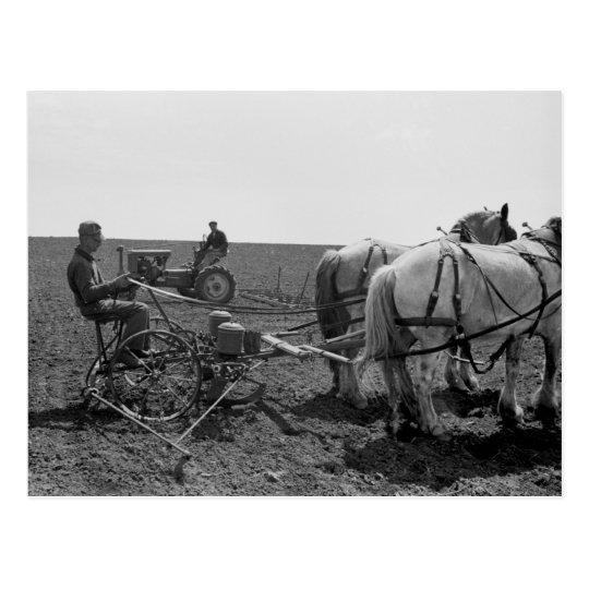 Horse Drawn Corn Planter 1940 Postcard Zazzle Com