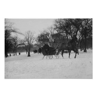 Horse drawn sleigh in Central Park, New York City Poster