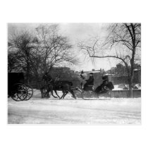 Horse Drawn Sleigh NYC Postcard