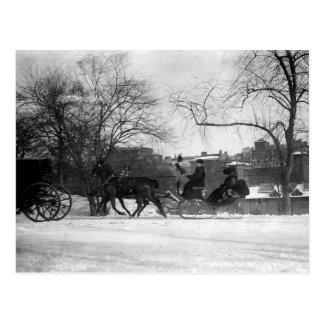 Horse Drawn Sleigh NYC Postcard