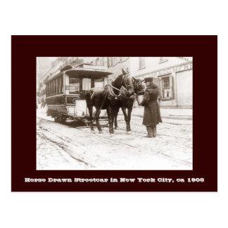 Horse Drawn Streetcar in New York City Postcard
