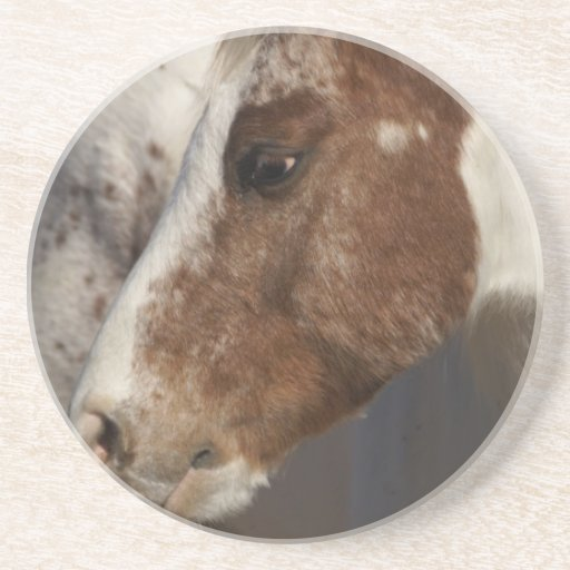 Horse Drink Coasters