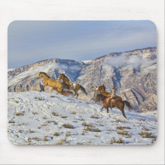 Horse Drive Through the Snow 3 Mouse Pad