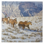 Horse Drive Through the Snow Large Square Tile
