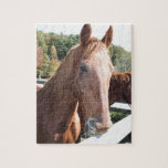Horse duo jigsaw puzzle