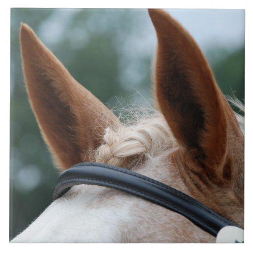 horse ears ceramic tiles