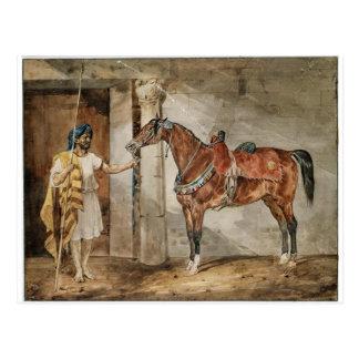Horse (Eastern) by Theodore Gericault Postcard