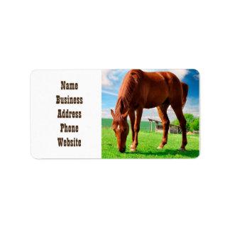 horse eating grass address label